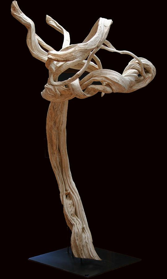 Mejores 15 im genes de troncos y manglares en pinterest - Modernes mobeldesign ...