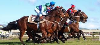 Detailed racecards provided by our company is the ultimate guide to  #Horse #Racing #Tomorrow in the #UK. You can check out all the runners and riders on the Race Day Rating racecard which has everything you need to know including latest form, tips, statistics, and  latest odds and betting from a selection of leading bookmakers.