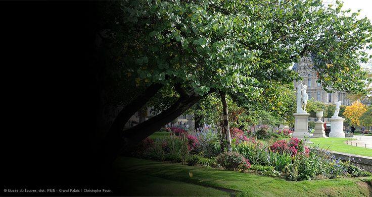 IMG-MEA- L'été au jardin