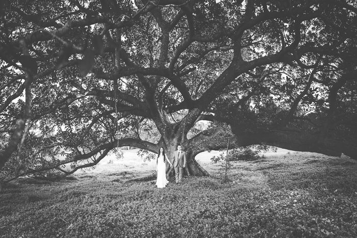 Moreton Bay Fig Tree in Centennial Park, Sydney by http://ninaclairephotography.com/lesley-blake-3/