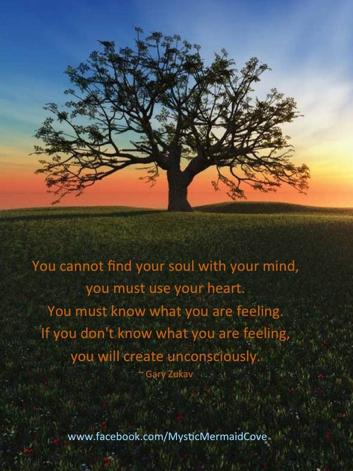 You Cannot Find Your Soul With Your Mind, You Must Use Your Heart. You