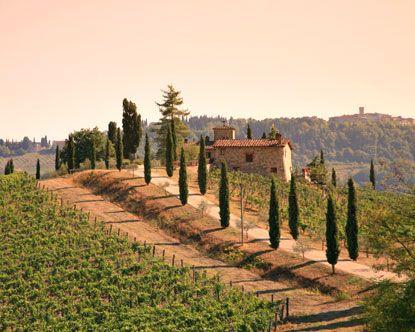 Google Image Result for http://3.bp.blogspot.com/-LB5cs6msrb8/T-tOsJQFOPI/AAAAAAAAAzM/ee1cfoTQUnA/s1600/vineyard_in_chianti_tuscany.jpg