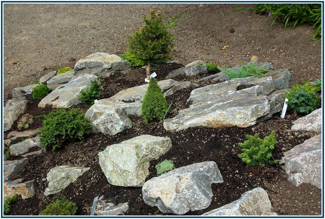 Incredibly Landscaping Round Rock Tx