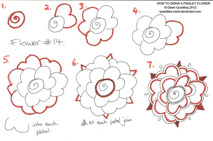 27 best images about cute things to draw on pinterest a for How to draw a cute flower
