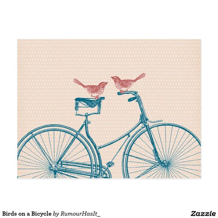 Vögel auf einem Fahrrad