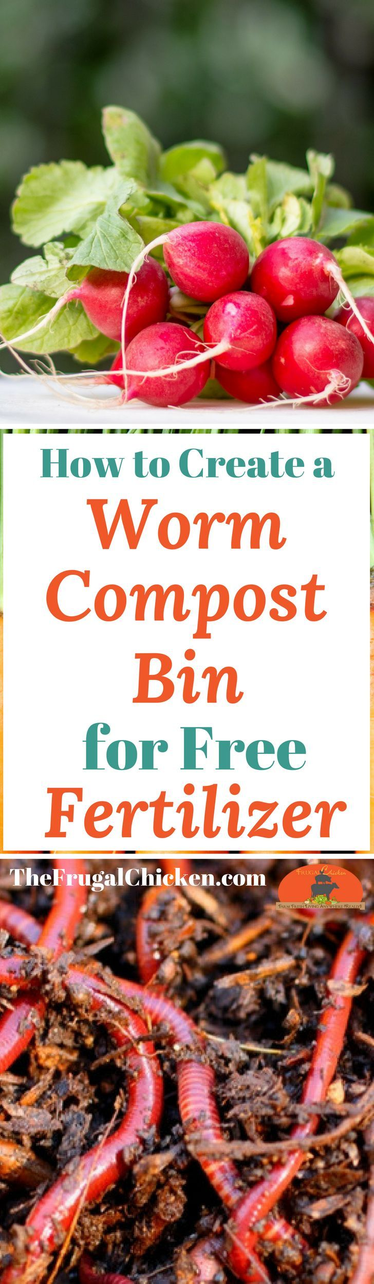 Grow a better garden with better fertilizer - which you can make in your own backyard with a worm compost bin! It's FREE!