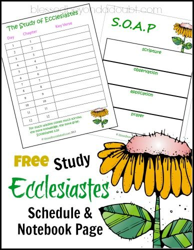 Meditate on a Bible Ecclesiastes Study with a FREE Schedule and Notebook Pages! - Blessed Beyond A Doubt