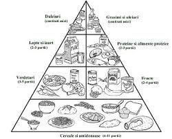 Imagini pentru piramida alimentelor fisa de lucru