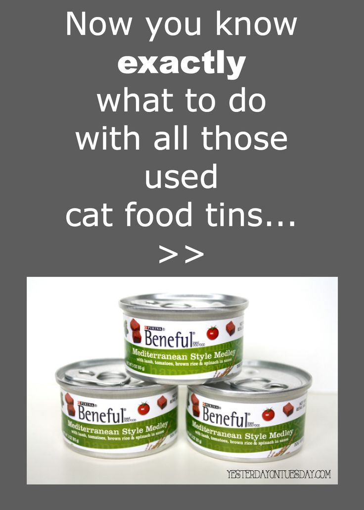 1000 Images About Recycle Tin Cans On Pinterest Folk