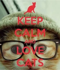 Resultado de imagen para keep calm and love cats