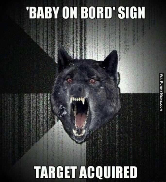 Animal memes Insanity wolf...