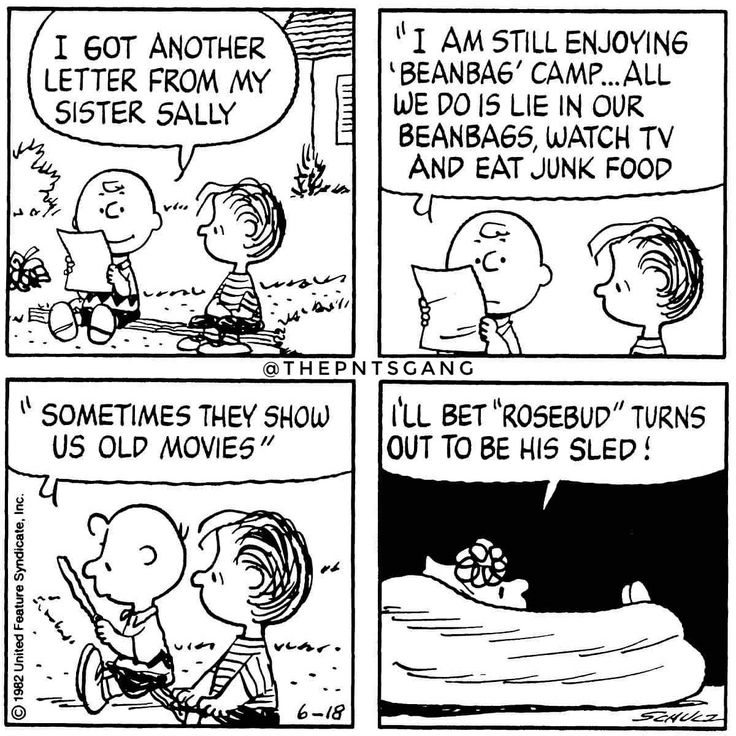 #thepntsgang #pnts #schulz #charliebrown #linus #sally #letter #beanbagcamp #watchtv #eat #junkfood #oldmovies #rosebud #sled