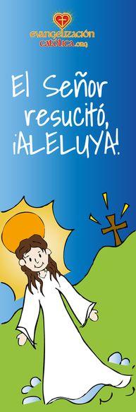 Marcadores para libros. www.evangelizacioncatolica.org