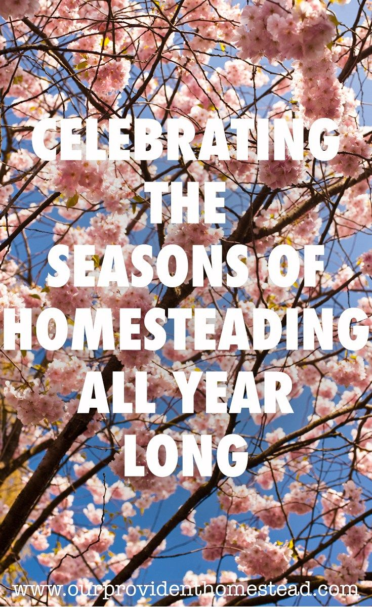 Are you constantly looking forward to the next season on your homestead without enjoying the one you are in? Click here to see how you can celebrate each season as it comes. #homesteading #homestead via @ourprovidenthom