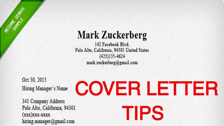 Job Application Guide on Writing a Cover Letter Resume Writing - mark zuckerberg resume