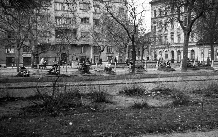 Ferenc tér, szemben a Bokréta utca torkolata. 1956