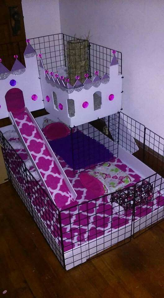 17 best images about c c cage diy guinea pigs on pinterest for Diy c c guinea pig cage