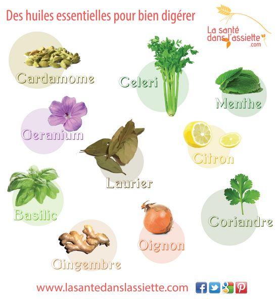 Les huiles essentielles qui favorisent la digestion