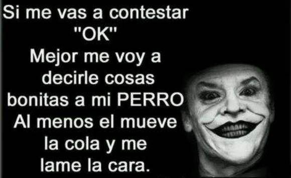 Mejor Hablo Con Mi Perro http://chiste.cc/1Tnt0zL  #Chistes #Humor