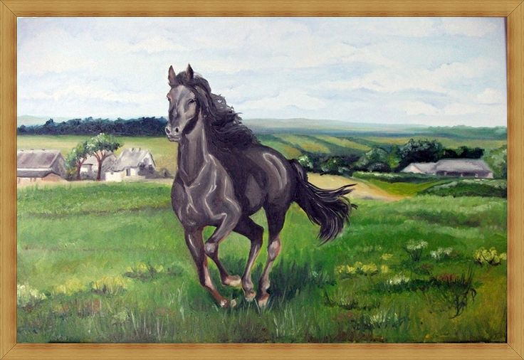 landscape with a horse