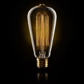 40 Watt Vintage Style Large Squirrel Cage Filament Light Bulb These stunning lights are made to imitate the warm glow of the original carbon filament bulbs. Each decorative looping filament is hand mounted and will bare the subtlest of differences from the next, making each an individual design piece in itself.