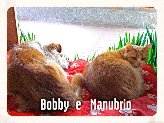 Bobby e Manubrio