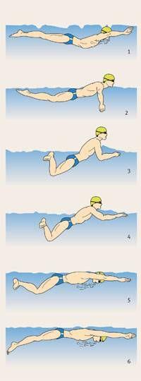 Luxury Anleitung Schwimmen mit der richtigen Technik