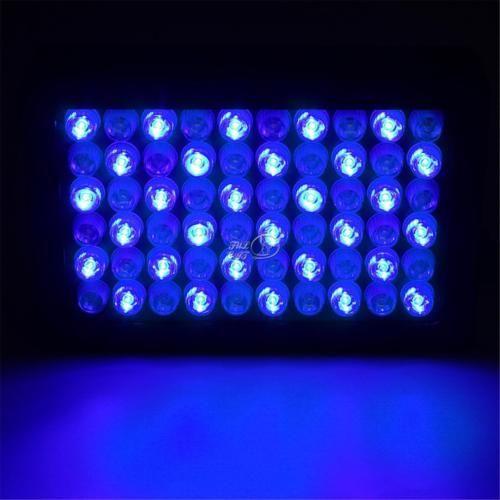 Led Aquarium Lights For Reef Tanks