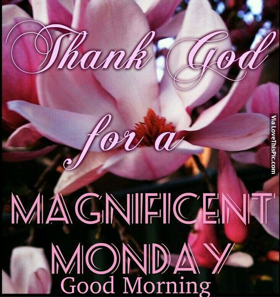 Thank God For A Magnificient Monday, Good Morning monday good morning monday quotes good morning quotes happy monday good morning monday quotes monday morning facebook quotes monday image quotes happy monday morning happy monday good morning