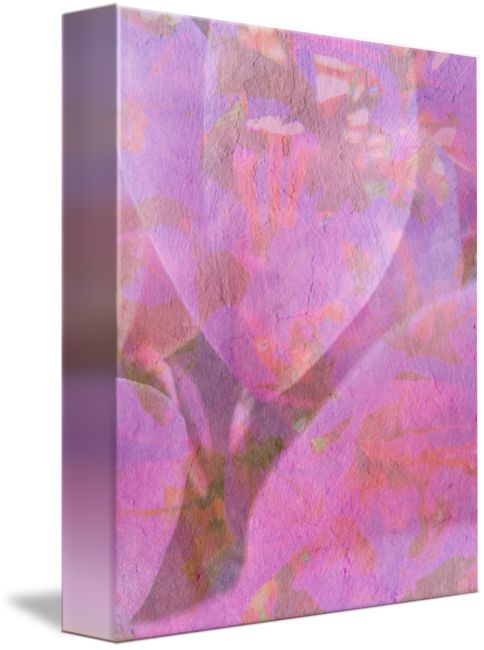 """""""cyclamen+petals+one""""+by+Vivien+Jane+C,+Rome+//+Soft+texture+cyclamen+flower.+digitally+enhanced+from+my+original+photograph+taken+in+Italy+//+Imagekind.com+--+Buy+stunning+fine+art+prints,+framed+prints+and+canvas+prints+directly+from+independent+working+artists+and+photographers."""