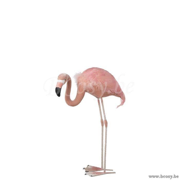 J Line 93250 Rose Staande Flamingo Laag Veren Roze Flamingos Flamingo S Roze Flamingo S Flamingo