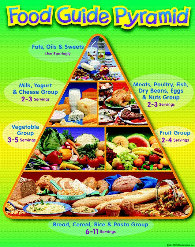 Image for Printable Food Pyramid For Kids 2013