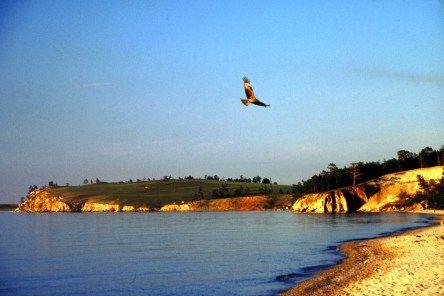 Russland Sibirien Baikalsee Insel Olchon Chuschir Adler