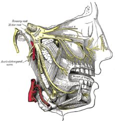 trigeminal neuralgia, used to be called 'suicide disease' and i know why. often misdiagnosed as tmj