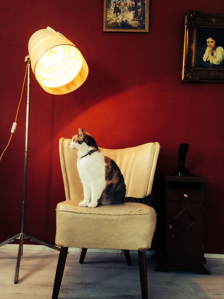 De Luxe Blowdryer Lamp by Briight Vintage&Bulbs