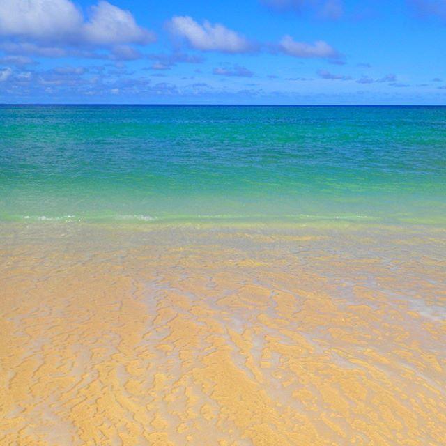 【earthship_okinawa】さんのInstagramをピンしています。 《まだまだ夏!!沖縄で海遊び!! HP→『アースシップ沖縄』で検索!! 電話番号→098-975-6312 #アースシップ沖縄 #沖縄 #okinawa #沖縄観光 #沖縄旅行 #沖縄おすすめ #海 #アウトドア #沖縄本島#夏#晴れ#女子旅#社員旅行#学生旅行#新婚旅行#カヤック#SUP#青空》