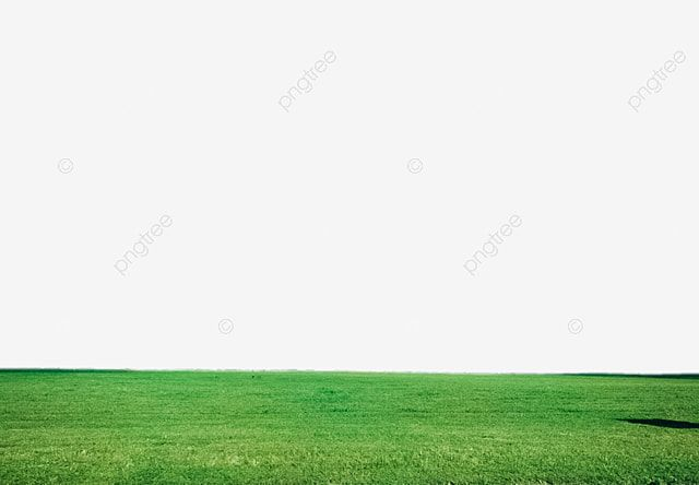 Green Grass Lawn Png Material Under The Blue Sky Green Grass Under The Blue Sky Green Grass Grassy Grass Png Transparent Clipart Image And Psd File For Free In 2021