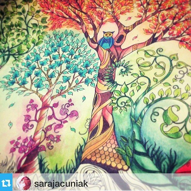 Sou Suspeita Pra Falar Ne Big Fa Da Sarajacuniak Coloring BookEnchanted GardenJohanna BasfordBig KidsColoringEnchanted Forest DrawingsPrettyOther