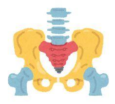 1日10分の骨盤矯正体操で下半身がみるみる痩せる! | 効果的なダイエット法をまとめたブログ