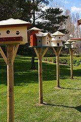 Birdhouse Row - Love it!!