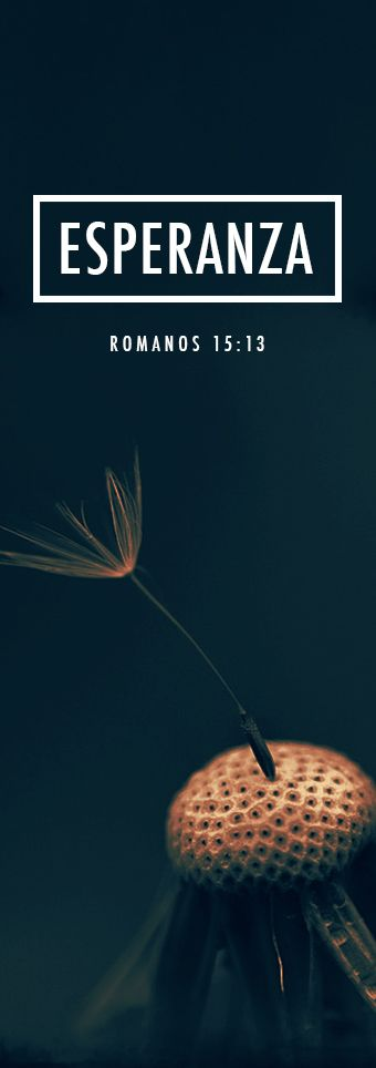 Romanos 15:13 Que el Dios de la esperanza los llene de toda alegría y paz a ustedes que creen en él, para que rebosen de esperanza por el poder del Espíritu Santo.