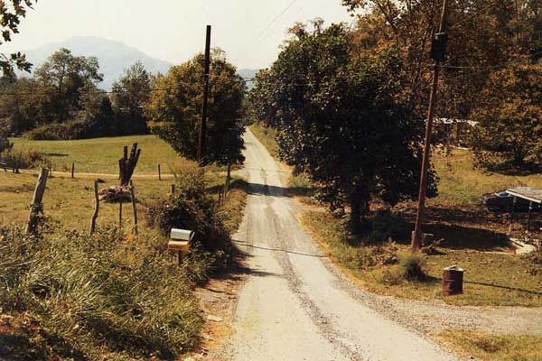Country road, Greenville, Tennessee, United States, 1983-86, photograph by William Eggleston.