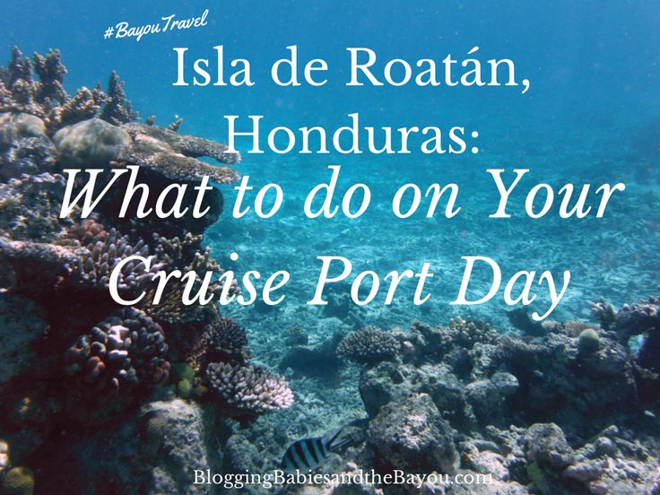 Isla de Roatán, Honduras_ What to do on Your Cruise Port Day #BayouTravel