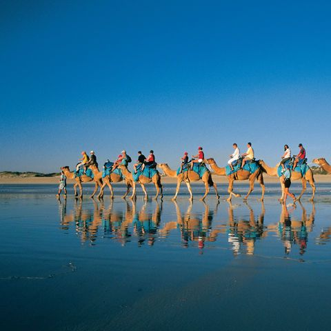 Camel Ride on Cable Beach, Broome, Western Australia