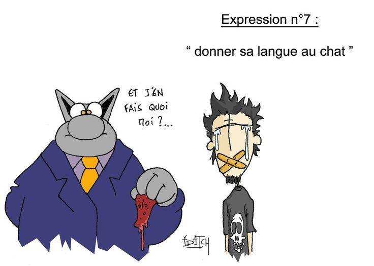 Donner Sa Langue Au Chat Anglais
