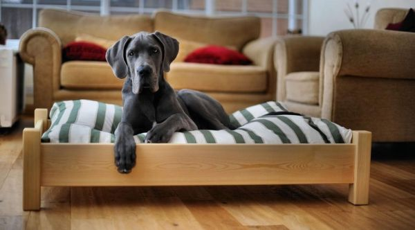 Handpainted in your choice of F colour to complement your interiors, our wooden dog beds will not only be a comfortable dog bed for your best friend but also a stylish addition to your home. We also have wooden dog beds made from wine barrels and wine boxes for smaller dogs. All our wooden dog beds are handmade in the UK and can be made to measure to suit all dogs.