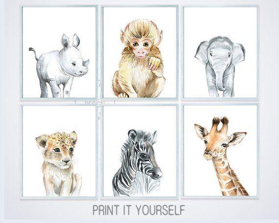Safari Animal Prints Baby Animal Nursery Decor Boy Wall Art