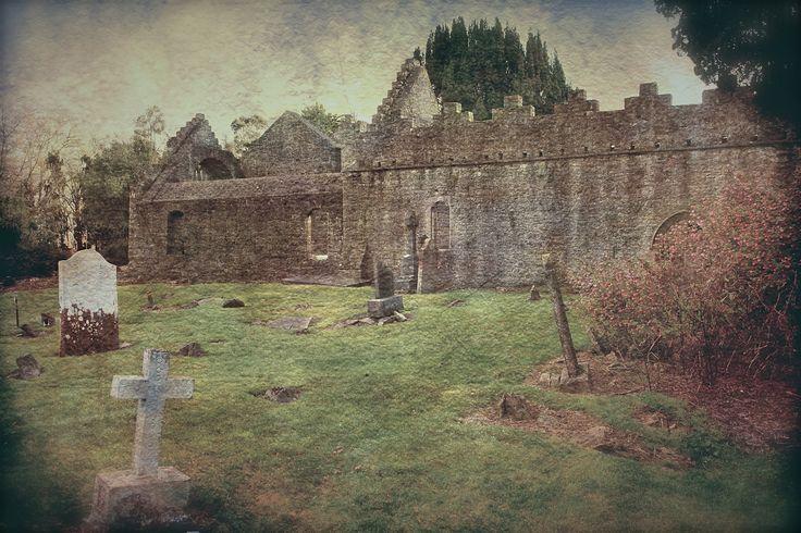 Ireland landscape - null