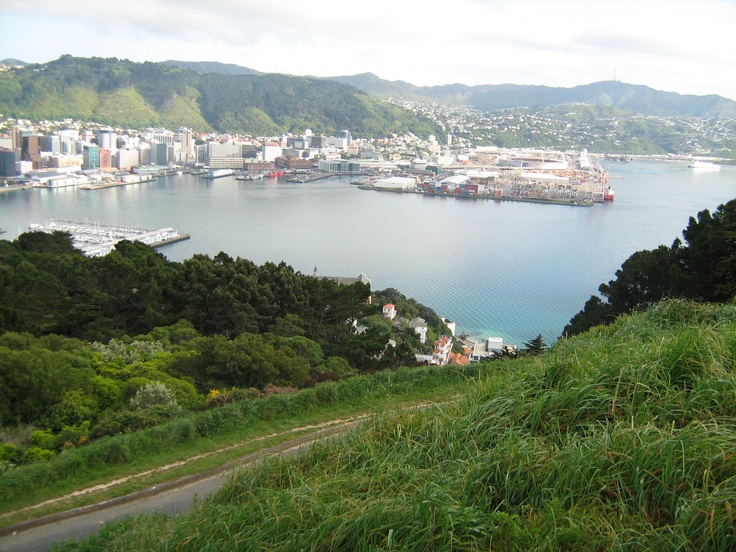 Wellington from the Mt Victoria lookout, New Zealand.