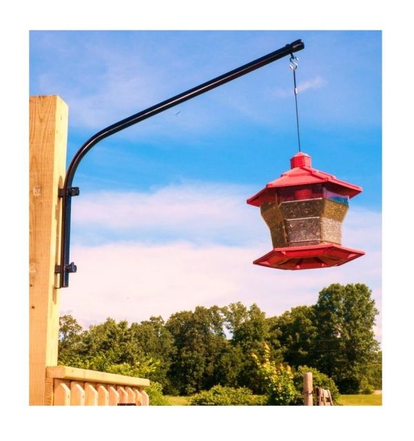 8 best Bird Feeder images on Pinterest | Bird feeders ...